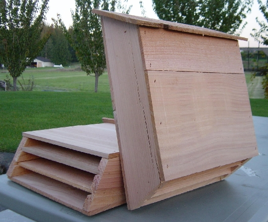 17 Best Ideas About Bat Box On Pinterest Bat Box Plans Build