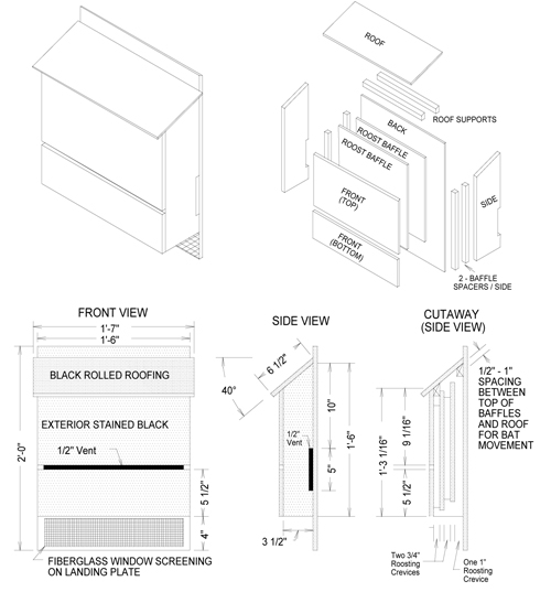 information on bat house plans home
